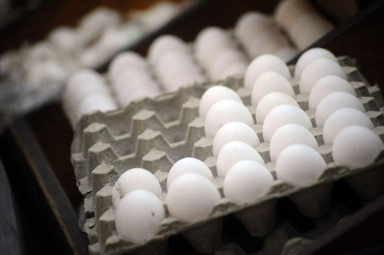 ¡Prepare su bolsillo!: precio del pollo y los huevos incrementarán