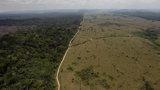 Colombia presenta plan para eliminar deforestación en 2030