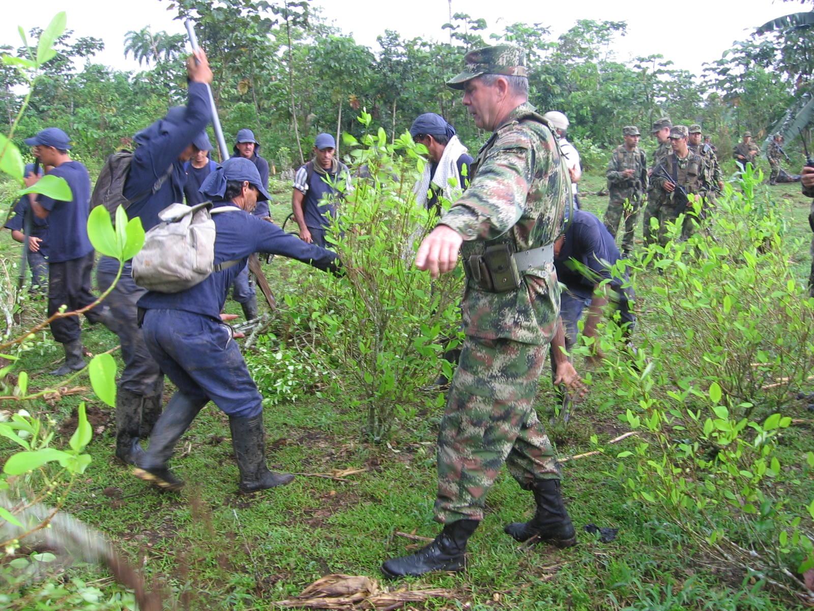 Siete erradicadores heridos en un campo minado por disidencias de Farc
