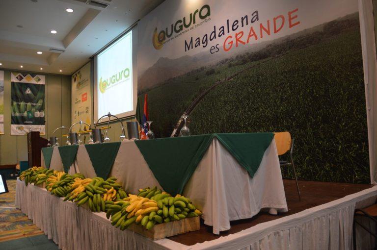 Todo listo para el Congreso Técnico Bananero de Colombia