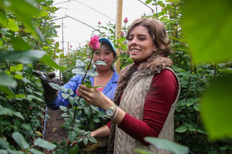 Exportación de aguacate hass y comercialización de flores en palabras de la viceministra de asuntos agropecuarios