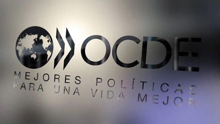 OCDE pide que gobiernos sigan apoyando la recuperación económica