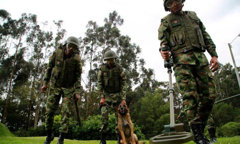 Ejército empezará desminado en Murindó, Antioquia