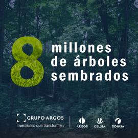 8 millones de árboles sembrados